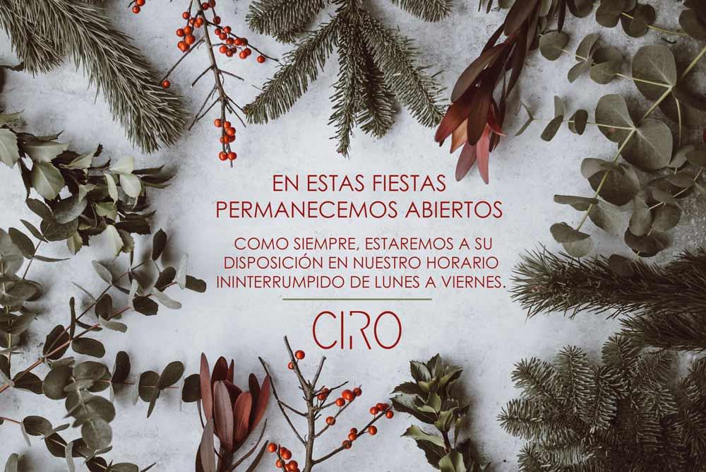La Clínica CIRO permanece abierta durante las Fiestas